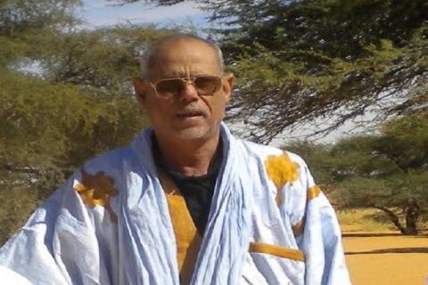 الشيخ محمد ولد الشيخ محمد المصطفى ولد الشيخ أحمد أبي المعالي