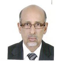 د.إسلمو ولد سيد أحمد
