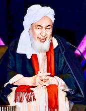 الشيخ / عبد الله بن بيه / رئيس منتدى تعزيز السلم