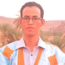 الصحفي : أبوبكر ولد الامام
