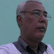 الكاتب : محمد فال ولد سيدي ميلة